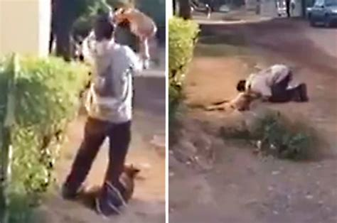 Man kills dog with brick then EATS IT in depraved act of